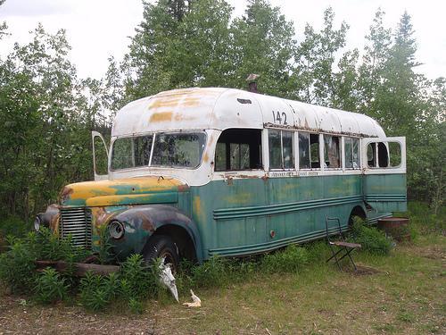スタンピード・トレイルのマジックバス