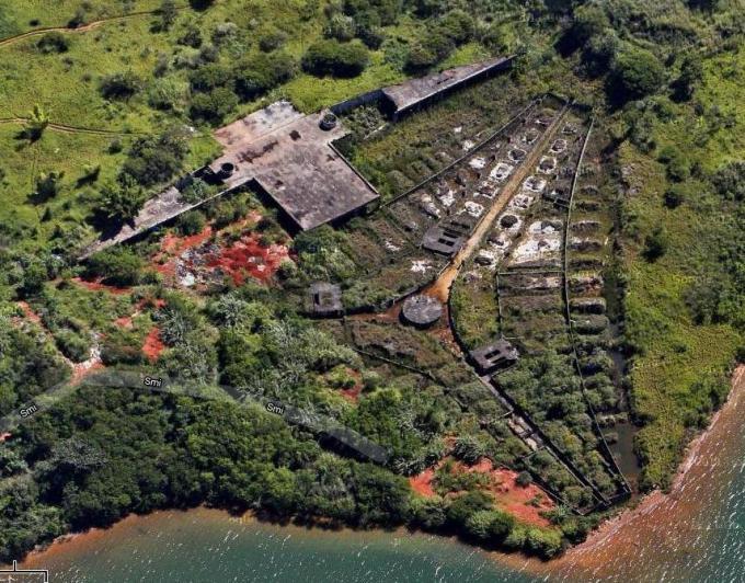 ブラジリアの画像 p1_11