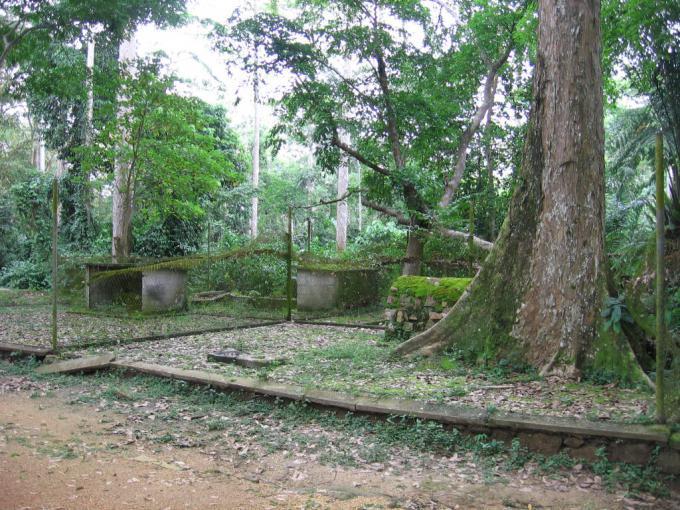 キサンガニ動物園(Kisangani zoo)
