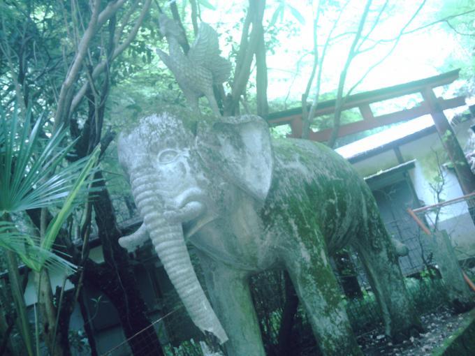 岩滝寺(象の像のある神社)