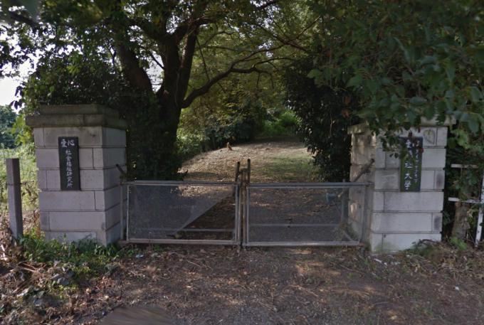 ダイアナ研究所(愛心ダイアナクラブ福祉大学)